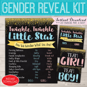 Twinkle Twinkle Little Star Gender Reveal Party Kit, Digital Old Wives Tales Chalkboard Sign, Baby Vote Ideas, Team Boy Girl Printable Decor