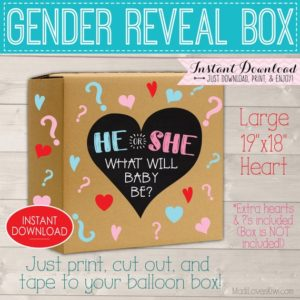 He or She Gender Reveal Box Sign, Digital Party Balloon Decor, Pink Blue Prop Ideas, Girl Boy Decorations, Chalkboard Printable Download Kit