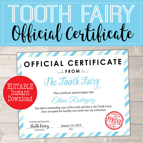image about Printable Tooth Fairy Certificate named Blue 1st Misplaced Enamel Certification for Boys Editable Teeth