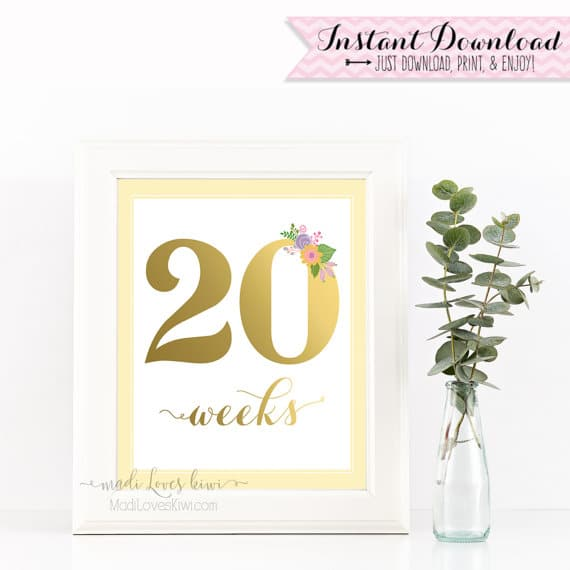 Printable Pregnancy Photo Shoot Prop, Maternity Photo Shoot Prop, Pregnancy Photo Prop, Maternity Photo Prop, Pregnancy Milestone Printables