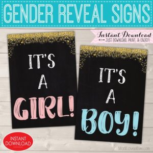 Gender Reveal Sign Digital, It's a Girl Boy Chalkboard Printable, Twinkle Little Star Party Decor Ideas, Pink Blue Maternity Photo Prop Set