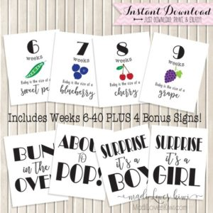 Pregnancy Milestone Printables, Pregnancy Week By Week, Maternity Photo Props, Printable Pregnancy Photo Props, Maternity Photoshoot Props
