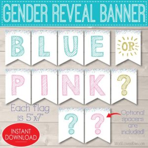 Blue or Pink Gender Reveal Decorations, Printable Party Banner Instant Download, Digital Baby Shower Decor Ideas, Boy Girl Bunting Sign Kit