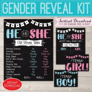 He or She Gender Reveal Party Kit, Old Wives Tales Sign, Baby Vote Decor Ideas Chalkboard Digital Set Wife Printable Team Girl Boy Pink Blue